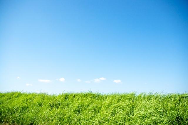あおぞらと緑の土手イメージ