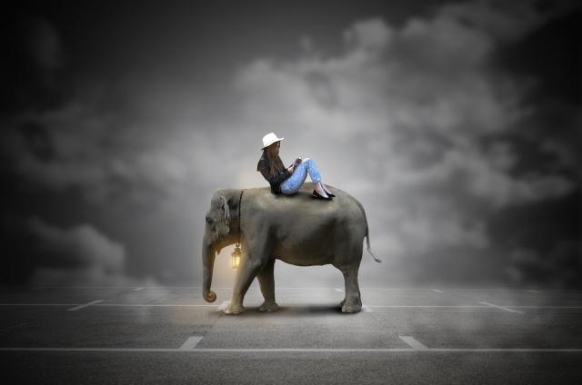 象に乗ってくつろぐ女性のイメージあおぞーら20180815