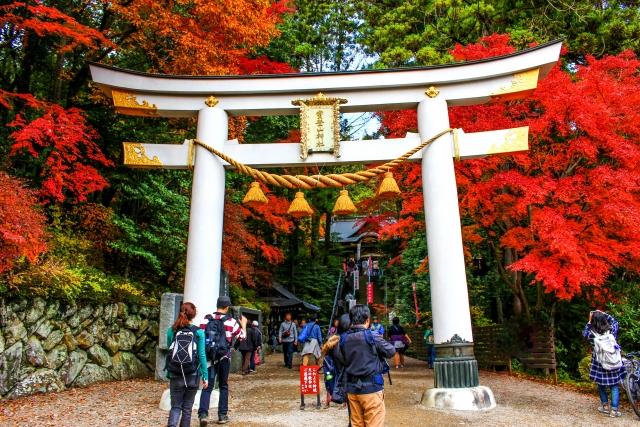 秋の風景紅葉の鳥居イメージ20181116