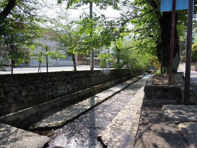 夏の水路のイメージ20190813