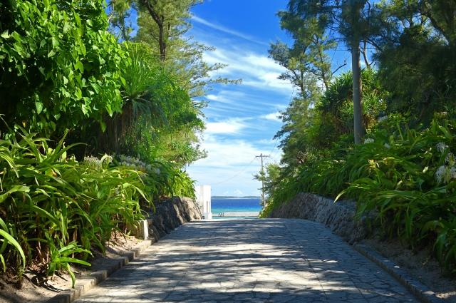 沖縄の海に続く道