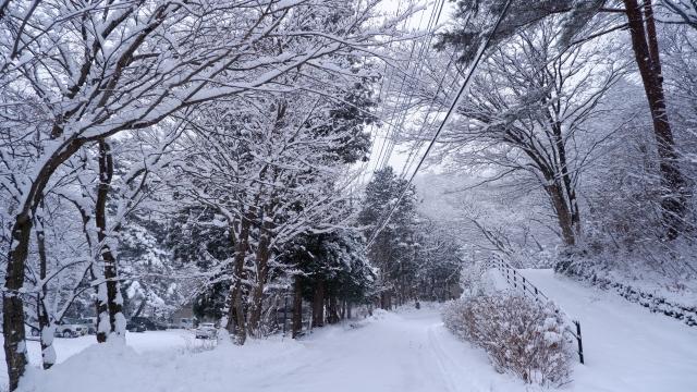 雪に埋もれた道路20210108