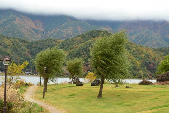 強風のイメージ20211001